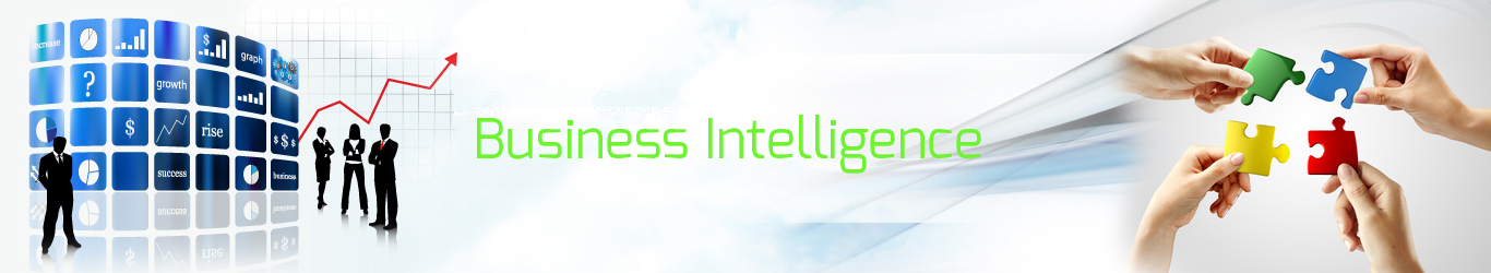 Business Intelligence Software, Data Information Services, SAP